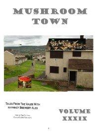 Mushroom Town - Vol 39 The Annals of Boz