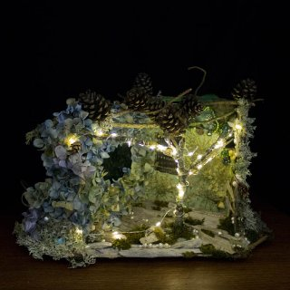 Hydrangea Fairy House, dark view
