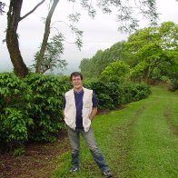 Costa Rica - En los cafetales