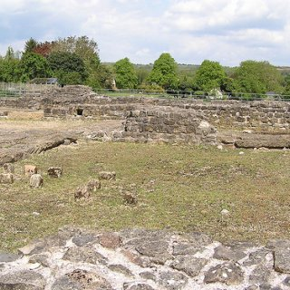 Forum Basilica 3