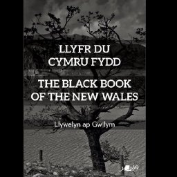 the-black-book-of-the-new-wales-represents-utopian-vision-for-an-independent-nation