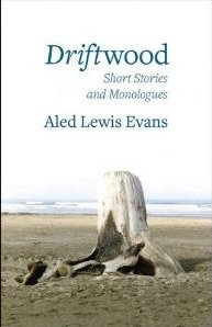 driftwood by aled lewis evans front cover detail