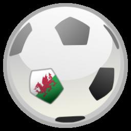 Wales v Slovakia  Euro 2016