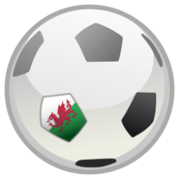 Wales v Russia Euro 2016