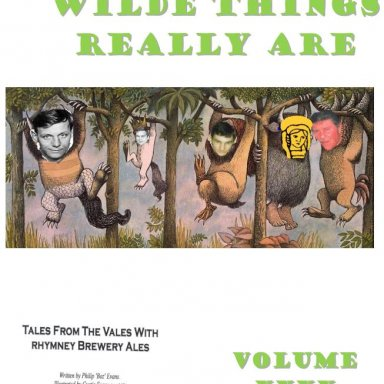 Where The Wilde Things Really Are - Vol 40 The Annals of Boz