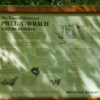 pwll_Y_wrach_nature_reserve.jpg