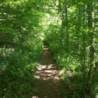 the_path_to_pwll_y_wrach