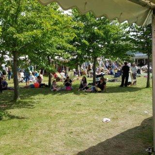 hay_festival_main_site.jpg