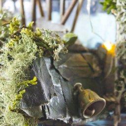 forestCU2AC.jpg