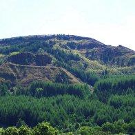 Mynydd Crags above Treherbert