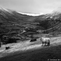 'First-snow' by Welsh Photographer, Graham Williams