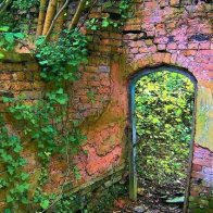 Ruthin Secret Garden patric