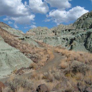 paintedhills7.jpg