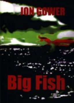 big fish by jon gower front cover detail