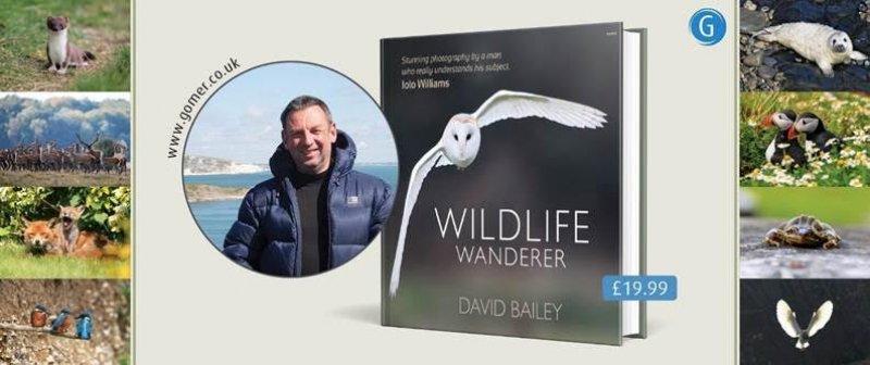 wildlife_wanderer.jpg