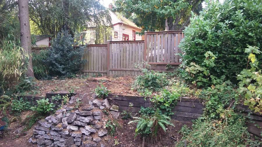 backyard terrace.jpg