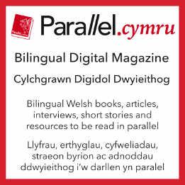 Parallel.cymru advert for Americymru.jpg