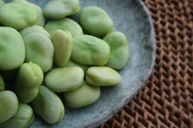 fava beans pic