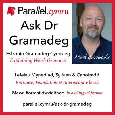 Ask Dr Gramadeg Sqwar8.jpg