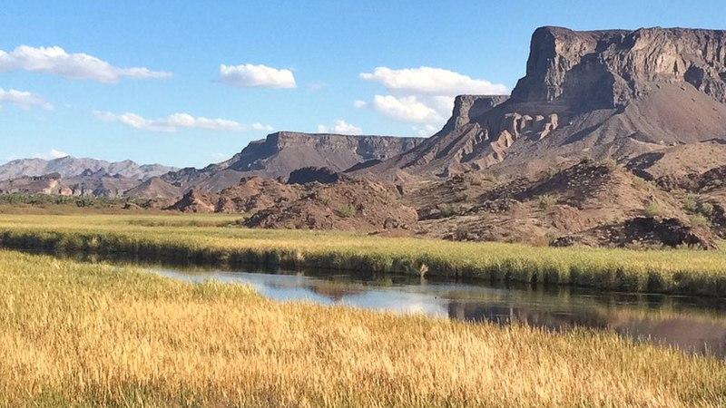 800pxBill_Williams_River_National_Wildlife_Refuge_33721976014.jpg