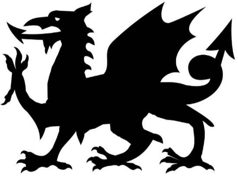 Welsh Dragon Pumpkin Stencil