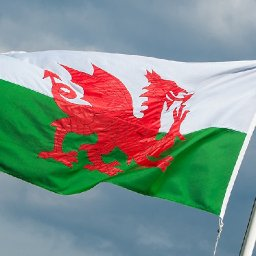 petition-demanding-depictions-of-dragons-have-a-penis-to-be-considered-by-senedd-committee
