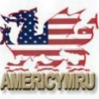 @americymru (active)