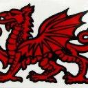 Welsh man