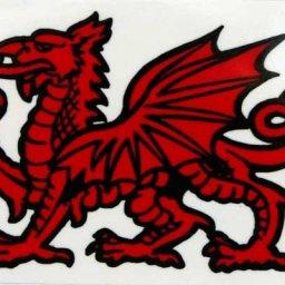 @Welsh man